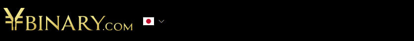 ワイバイナリー(Ybinary)ナビ